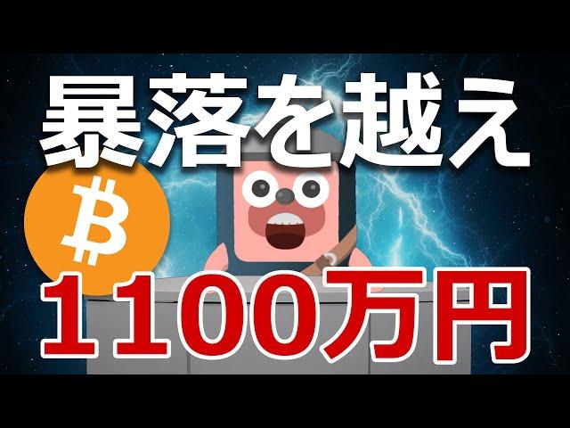 ビットコインが暴落を乗り越え1100万円になる話をしよう。