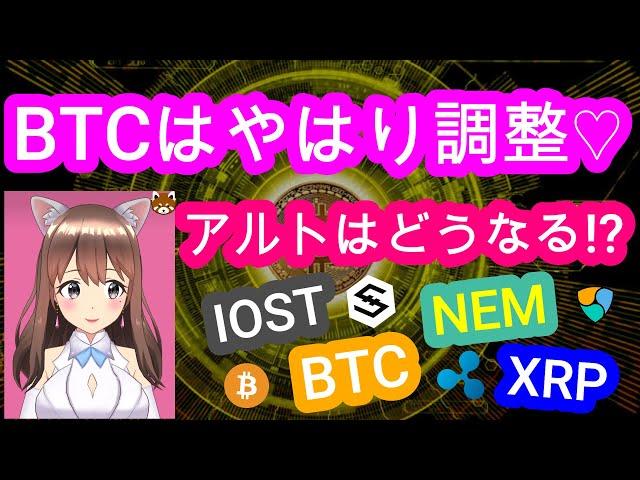 3/15【仮想通貨】BTC&XRP&NEM&IOST相場分析♡毎日… #仮想通貨
